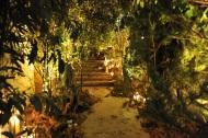 Elizabeth Marsh enchanted forest